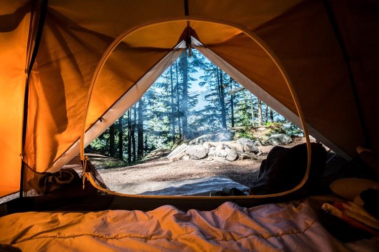 テントの中から見た外